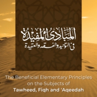 Logo of the podcast The Beneficial Elementary Principles