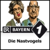 Logo of the podcast Die Nastvogels - Bayern 1