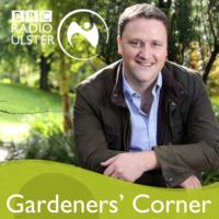 Logo of the podcast Gardeners' Corner