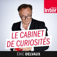 Logo du podcast La fin des questions au gouvernement sur France 3