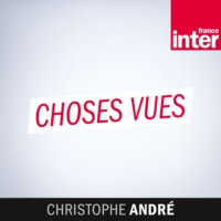 Logo du podcast France Inter - Choses vues : Christophe André