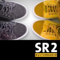 Logo du podcast Diskurs