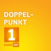 Logo of the podcast Doppelpunkt