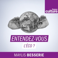 Logo of the podcast France Culture - Entendez-vous l'éco ?