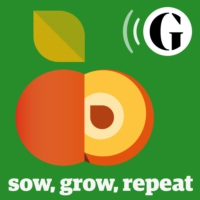 Logo of the podcast Sow, Grow, Repeat - The Guardian
