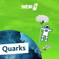 Logo du podcast WDR 5 Quarks - Wissenschaft und mehr