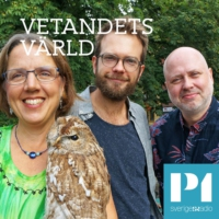 Logo of the podcast Vetandets värld