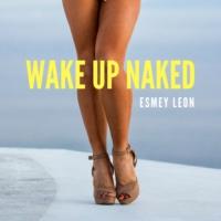 Logo of the podcast Wake Up Naked
