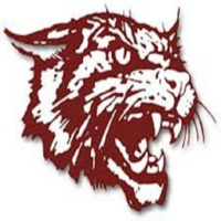 Logo of the podcast Littlefield High School Sports