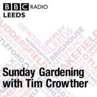 Logo of the podcast Sharing ideas for your garden