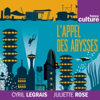 Logo of the podcast L'Appel des abysses