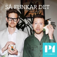 Logo of the podcast Så funkar det