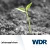 Logo of the podcast WDR Lebenszeichen