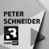 Logo of the podcast Peter Schneider