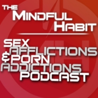 Logo of the podcast Sex Afflictions & Porn Addictions