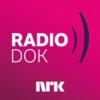 Logo of the podcast Radiodok