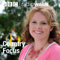 Logo of the podcast The 2018 Royal Welsh Show preview