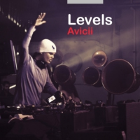 Logo of the podcast Rouge Platine - Avicii Levels du 13.02.2015