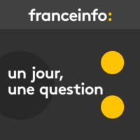 Logo of the podcast France Info - Un jour, une question