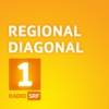 Logo of the podcast Regional Diagonal