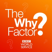 Logo du podcast The Why Factor