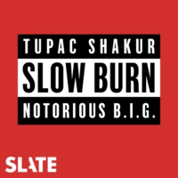Logo of the podcast Slow Burn