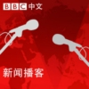 Logo of the podcast BBC World Service - Podcast of the day (新闻播客)