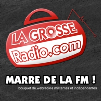 Logo of the podcast Les Podcasts de La Grosse Radio