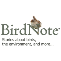 Logo of the podcast BirdNote