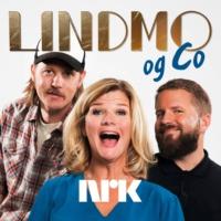 Logo of the podcast Lindmo og Co