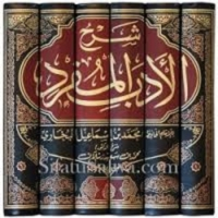 Logo of the podcast Al-Adab Al-Mufrad