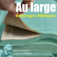Logo du podcast Au large - Eclairages Bibliques