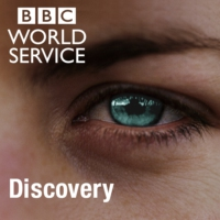 Logo du podcast BBC World Service - Discovery