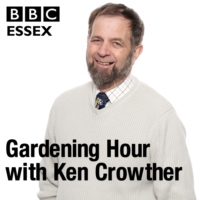 Logo of the podcast Leaf Blowers, Christmas Cactus and Pansies