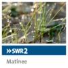 Logo du podcast SWR2 Matinee