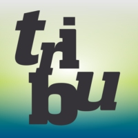 Logo du podcast Tribu - La 1ere
