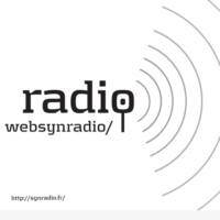 Logo of the podcast PHILIPPE PETIT Spécial MODULISME