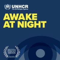 Logo of the podcast Awake At Night