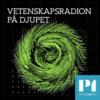Logo of the podcast Vetenskapsradion På djupet