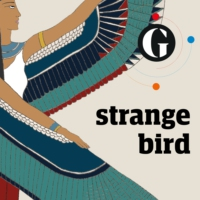 Logo of the podcast Strange Bird