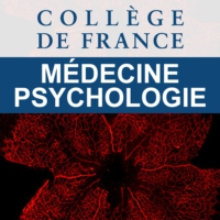 Logo of the podcast Collège de France (Médecine/Psychologie)