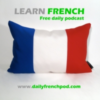 Logo du podcast Learn French with daily podcasts