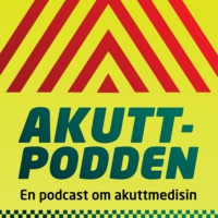 Logo du podcast Fagidentitet