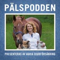 Logo du podcast Pälspodden