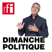 Logo of the podcast Yves Mény, politologue, spécialiste de la corruption