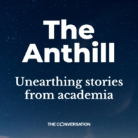 Logo of the podcast The Anthill