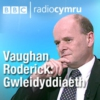Logo of the podcast Vaughan Roderick: Gwleidyddiaeth