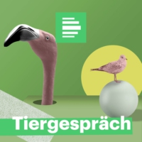 Logo of the podcast Tiergespräch: Betrunkene Affen