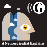 Logo of the podcast A Neuroscientist Explains