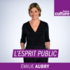 Logo of the podcast L'esprit public